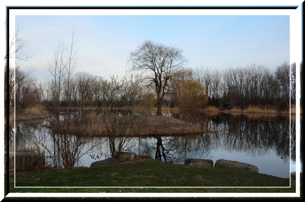 Parc_Angrignon_Montreal_P3