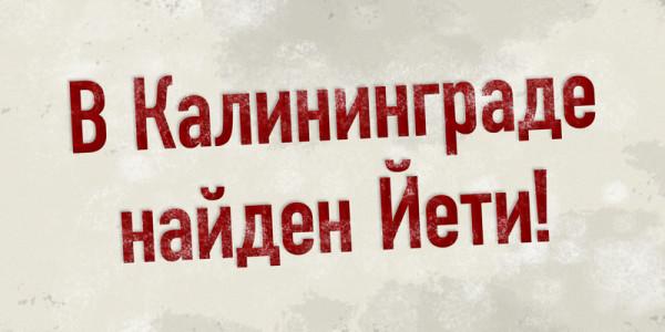 YETI_step1