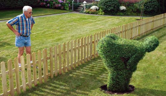 Разговор с соседом