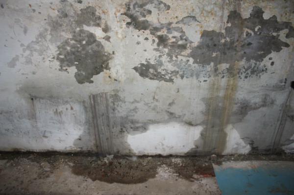 В подвале